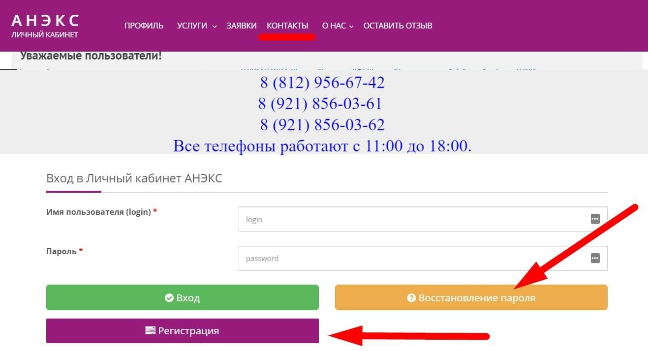 педагогический сайт Анекс