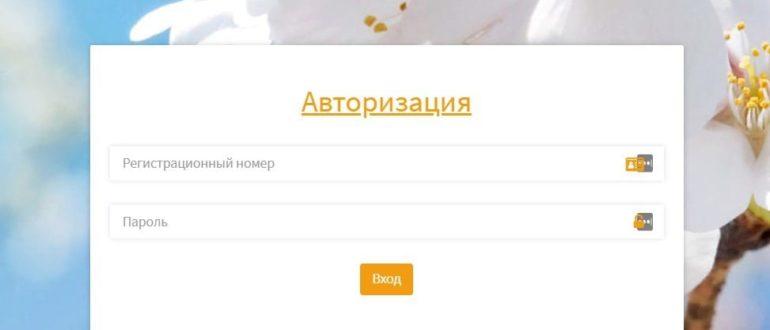 Вита РА сайт