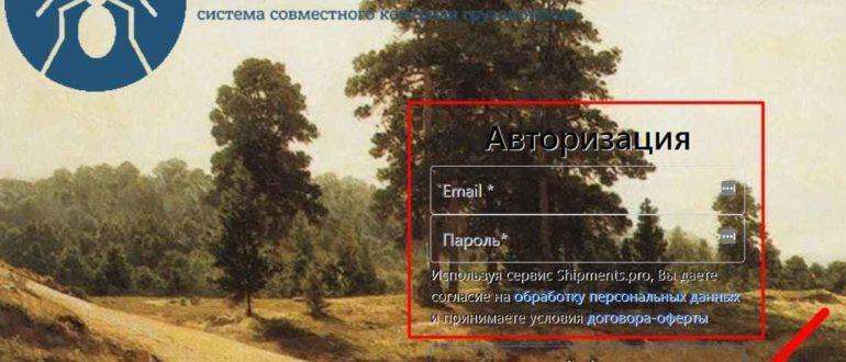 Надис.ру